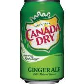 Canada dry ginger ale - Soda américain au gingembre