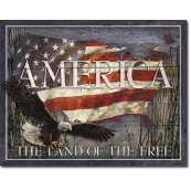Plaque America Land of Free