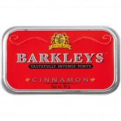 Barkley's Mint Cinnamon