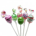 Sucettes Charms Blow pop avec chewing gum (x5) : «Charms Blow pops Assorted»